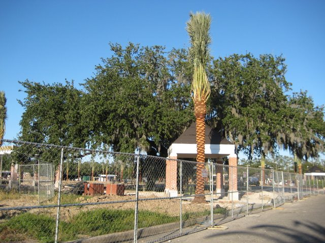 Cashio Cochran's big flourish--a palm in front of a pyramid hat building in front of an ancient live oak. Bam!